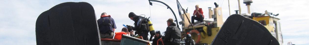 Urheilusukellusseura Delfin ry