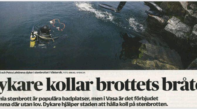 Delfiinit i Vasabladet