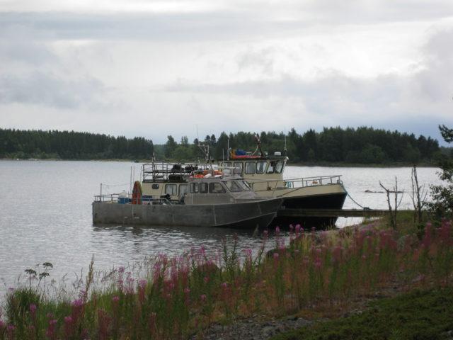 Tauolla Kaskisissa kesällä 2017, Kuva: Jouni Keskimäki